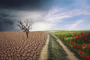 landscape, change, climate-4684217.jpg